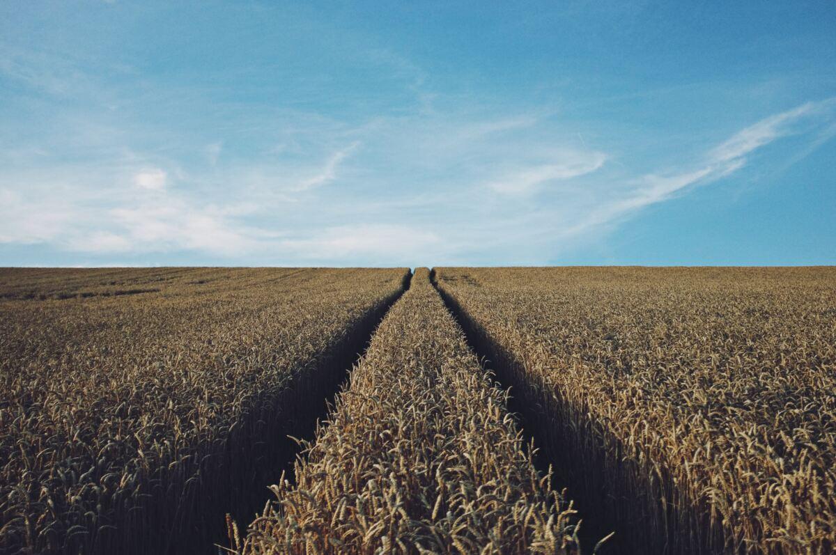 Redes satelitales para la agricultura