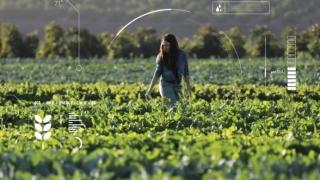 Cultivos Inteligentes: El Futuro del Sector Agroindustrial en Colombia