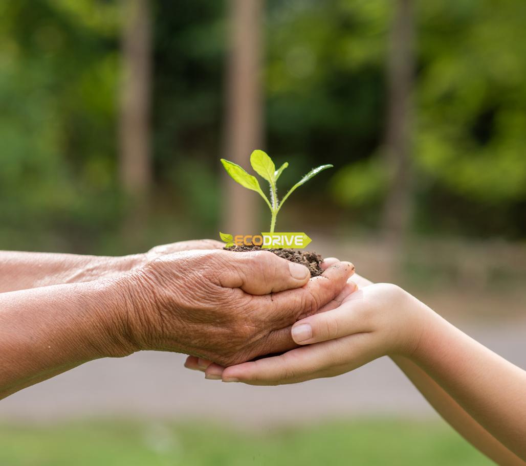 En el Día Mundial del Medio Ambiente, ECODRIVE gratis para clientes.