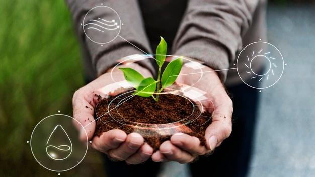 ¡El IoT se convierte en un gran aliado para el sector Agro de Colombia!